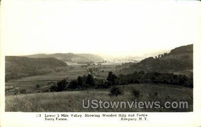 Wooded Hills & Gertile Dariry Farms - Allegany, New York NY Postcard