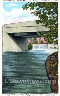Fish Hatchery, Adirondack Mts - Old Forge, New York NY Postcard