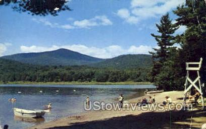 Lewey Lake - Adirondack Mts, New York NY Postcard