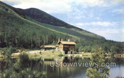 Toll House - Adirondack Mts, New York NY Postcard