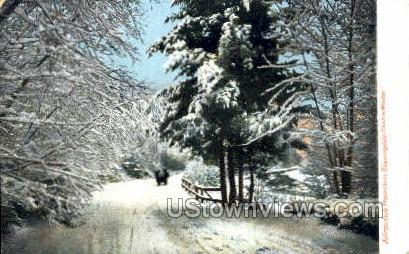 Bloomingdale - Adirondack Mts, New York NY Postcard