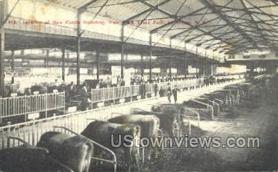 New Cattle Bldg - Syracuse, New York NY Postcard