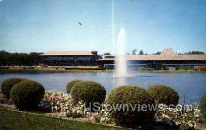 Adirondacks - Saratoga Springs, New York NY Postcard