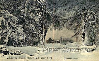 Bronx Park, New York, NY Postcard