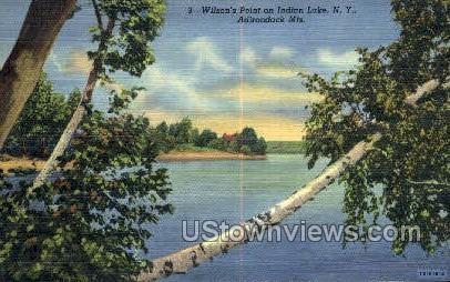Wilson's Point - Indian Lake, New York NY Postcard