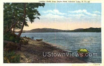 Eagle Point - Schroon Lake, New York NY Postcard