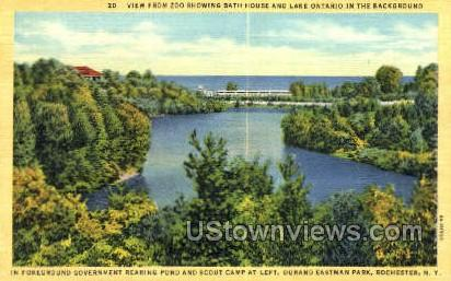 Durand Eastman Park - Rochester, New York NY Postcard