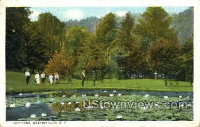 Lily Pond - Watkins Glen, New York NY Postcard