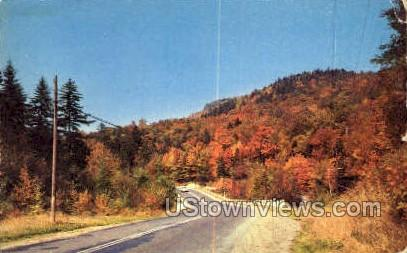 Bald Mountain House - Old Forge, New York NY Postcard