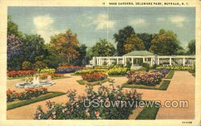 Rose Gardens, Delaware Park - Buffalo, New York NY Postcard