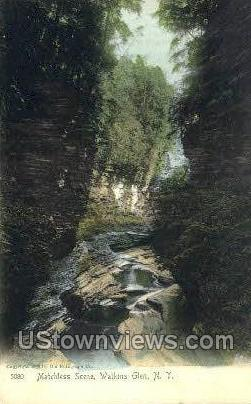 Watkins Glen, New York, NY Postcard