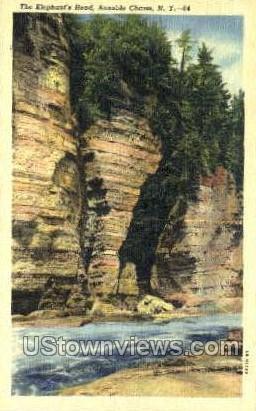 Elephant's Head - Ausable Chasm, New York NY Postcard