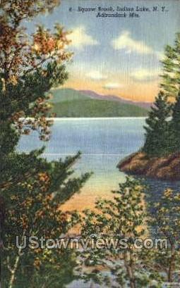 Indian Lake - Adirondack Mts, New York NY Postcard