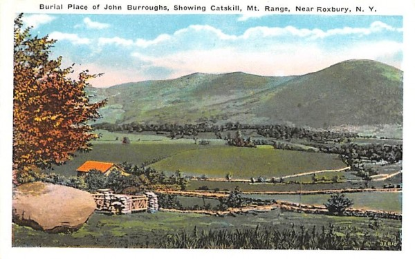 Burial Place of John Burroughs Roxbury, New York Postcard