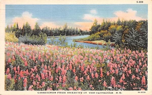 Greetings from Roxbury, New York Postcard