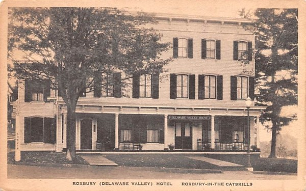 Roxbury Delaware Valley Hotel New York Postcard