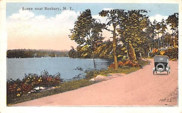Misc Roxbury, New York Postcard