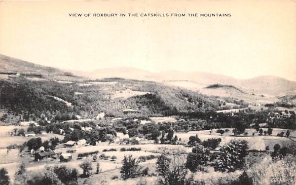 Catskill Mountains Roxbury, New York Postcard