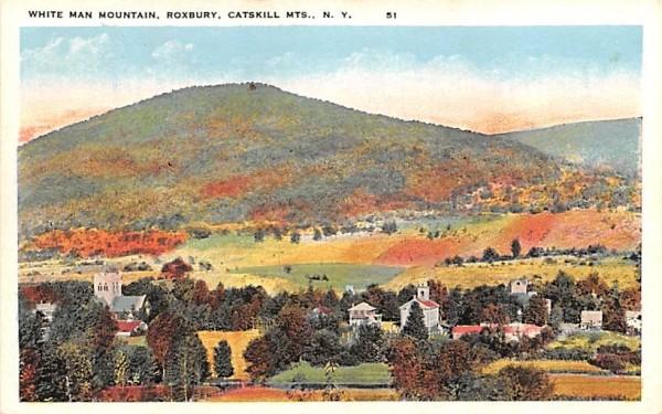 White Man Mountain Roxbury, New York Postcard