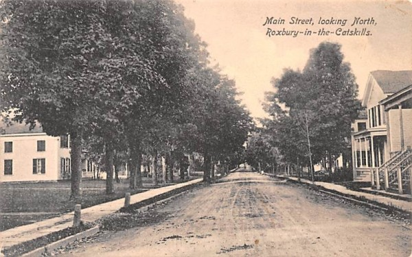 Main Street Looking North Roxbury, New York Postcard
