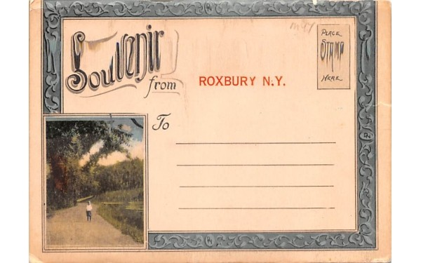 Souvenir from Roxbury, New York Postcard