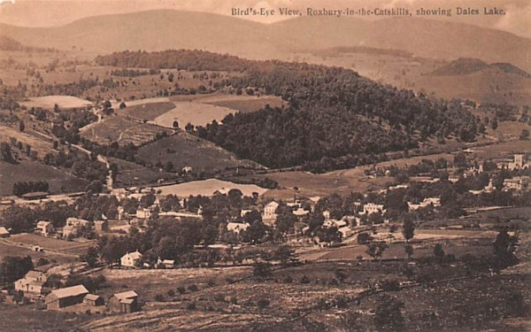 Shwoing Dales Lake Roxbury, New York Postcard