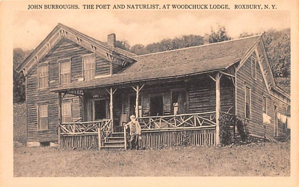 John Burroughs, Poet & Naturlist Roxbury, New York Postcard