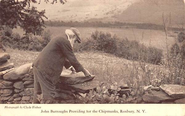 John Burroughs Providing for the Chipmunks Roxbury, New York Postcard
