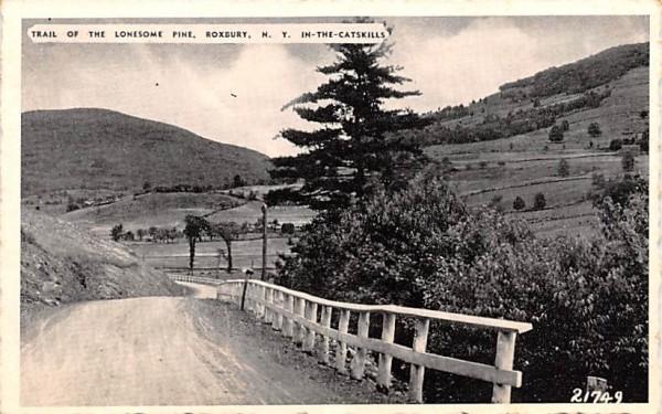 Trail of the Lonesome Pine Roxbury, New York Postcard