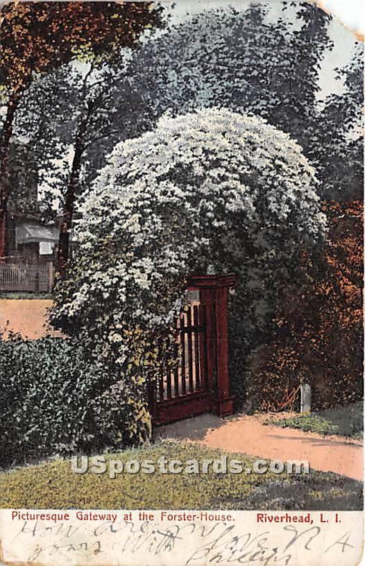 Forster House, Riverhead - New York NY Postcard