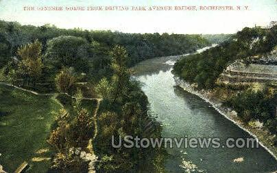 Genesee Gorge - Rochester, New York NY Postcard