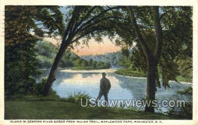 Genesee River Gorge, Indian Trail - Rochester, New York NY Postcard