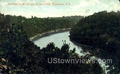 Seneca Park - Rochester, New York NY Postcard