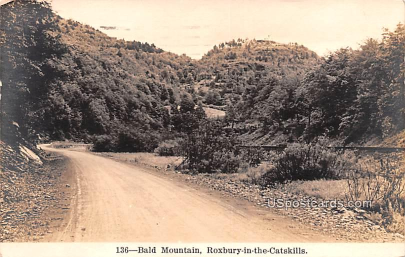 Bald Mountain - Roxbury in the Catskills, New York NY Postcard