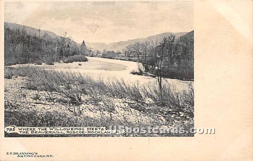 Where the Willowemoc Meets - Rockland, New York NY Postcard