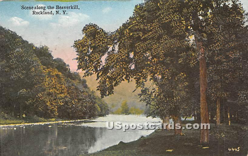 Scene along the Beaverkill - Rockland, New York NY Postcard