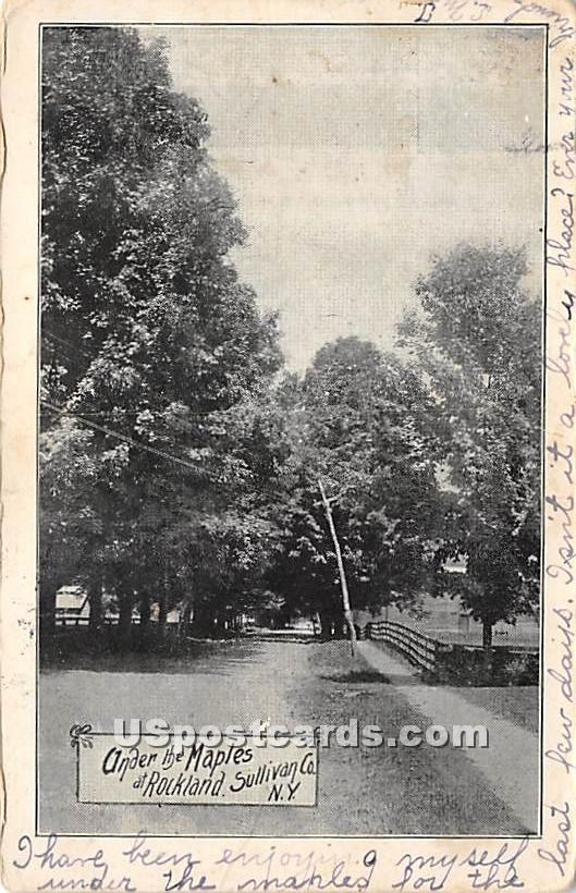 Under the Maples - Rockland, New York NY Postcard