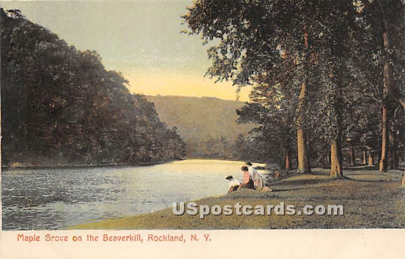 Maple Grove on the Beaverkill - Rockland, New York NY Postcard