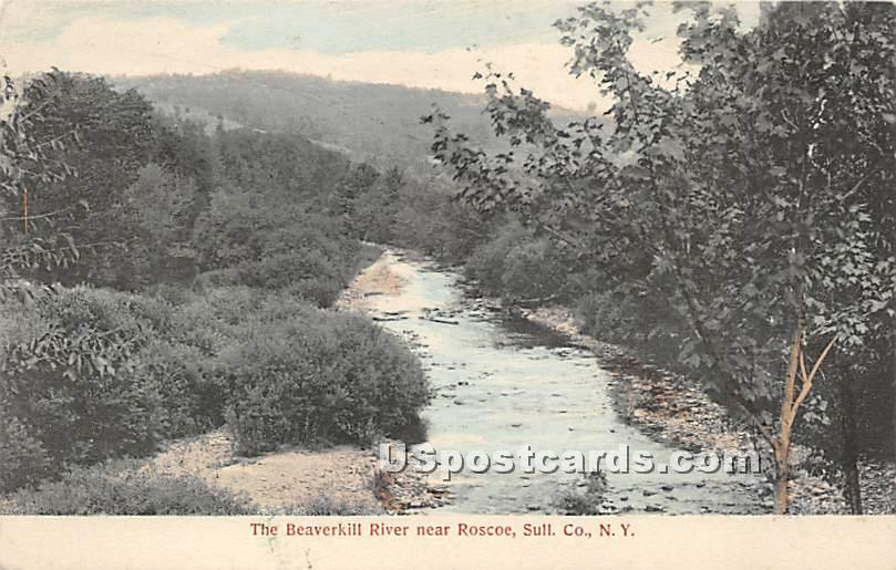 The Beaverkill River - Roscoe, New York NY Postcard
