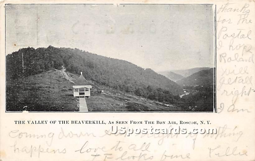 The Valley of the Beaverkill - Roscoe, New York NY Postcard