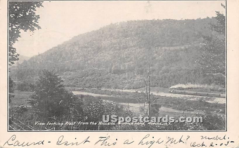 View Looking West from Hillside Summer Home - Roscoe, New York NY Postcard
