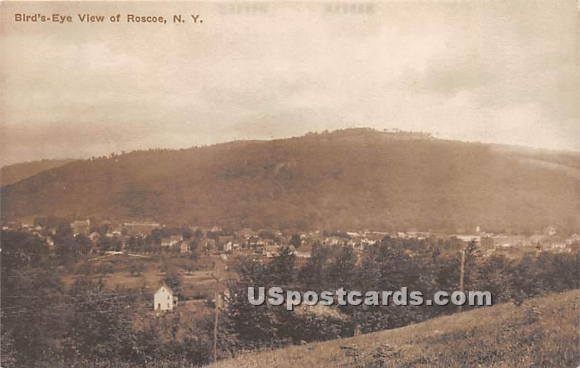 Birds Eye View - Roscoe, New York NY Postcard