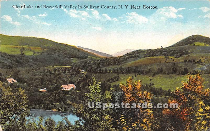 Clear Lake and Beaverkill Valley - Roscoe, New York NY Postcard