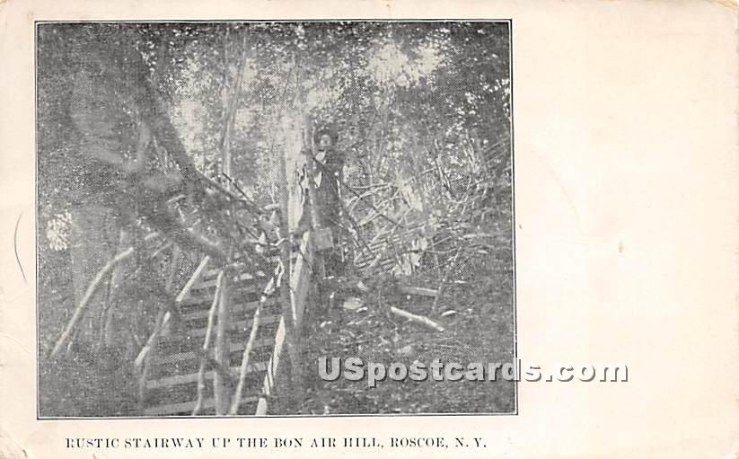 Rustic Stairway Up the Bon Air Hill - Roscoe, New York NY Postcard