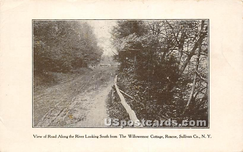 View of Road Along the River Looking South - Roscoe, New York NY Postcard