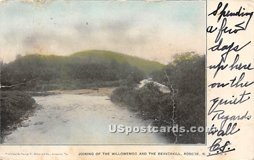 Joining the Willowemoc and the Beaverkill - Roscoe, New York NY Postcard