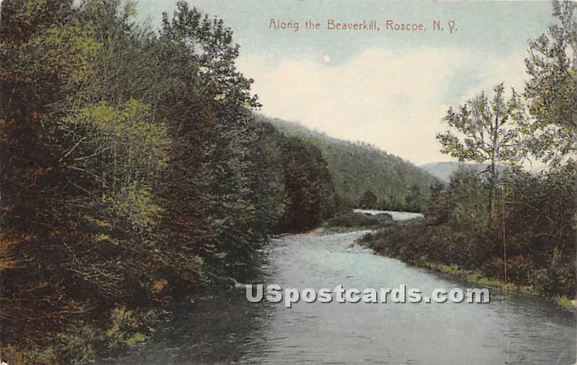 Along the Beaverkill - Roscoe, New York NY Postcard