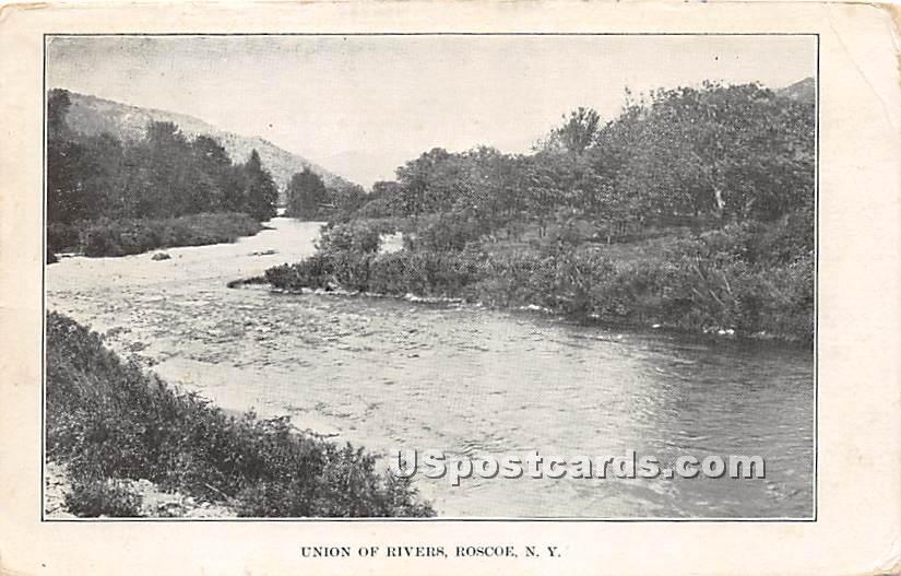 Union of Rivers - Roscoe, New York NY Postcard
