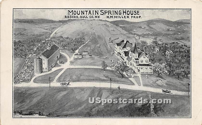 Mountain Spring House - Roscoe, New York NY Postcard