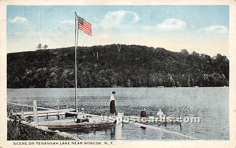 Scene on Tenannah Lake - Roscoe, New York NY Postcard